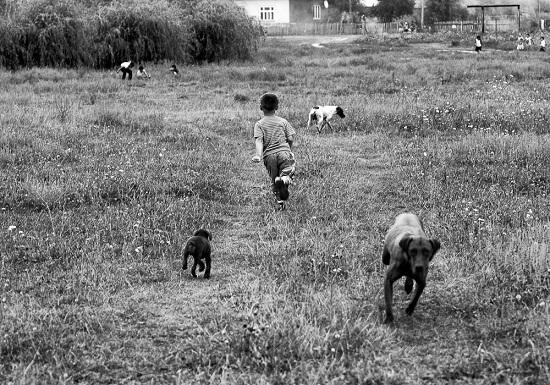 futas_a_kutyakkal
