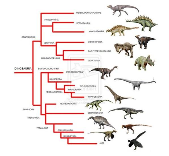 dinoszaurusz fajok
