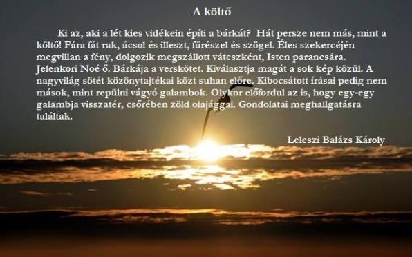 balazs_karoly9