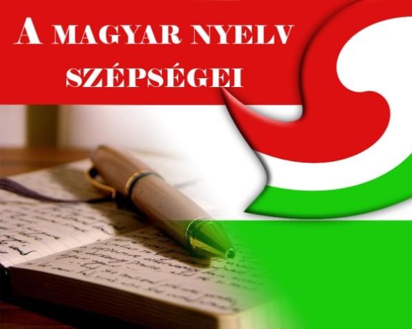 nyelv_kovacs2