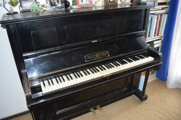 zongora5