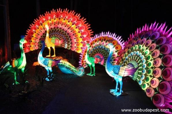 Sárkányok Éjszakái – Kínai fényvarázs az Állatkertben