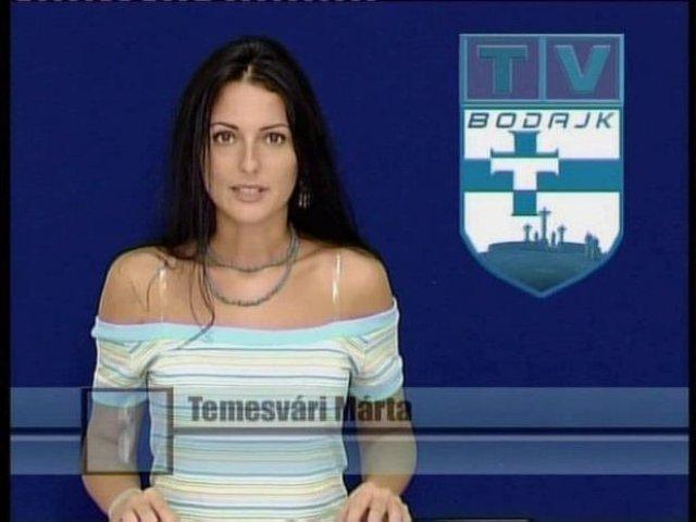 temesvari2