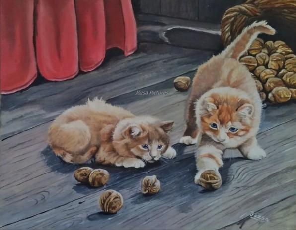 jatszo macskak0