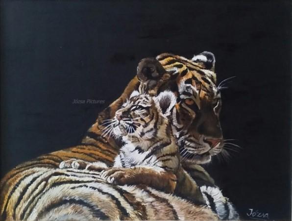 tigrisek0