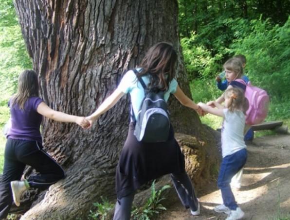 Parádfürdői Ifjúsági Tábor és Erdei Iskola – az Ifjúsági Otthon ajánlata