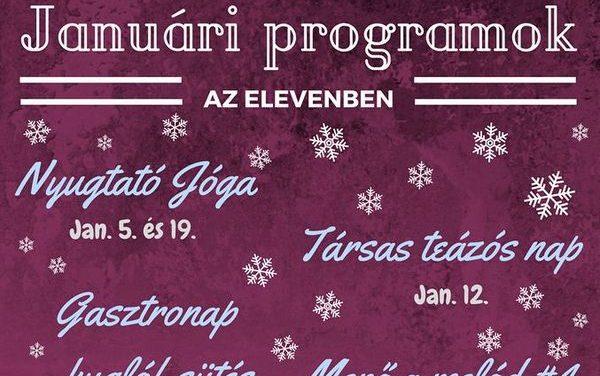 ELEVEN Ifjúsági Közösségi Tér januári ajánlata