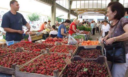 Szamóca, meggy és cseresznye kínálja magát a piacon