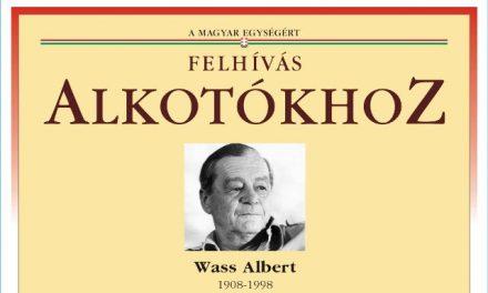Alkotásával támogassa a kecskeméti Wass Albert emlékművet!