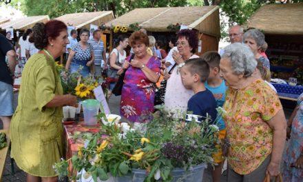 XX. Térségi Kertészeti és Élelmiszeripari Kiállítás és Vásár Kecskeméten