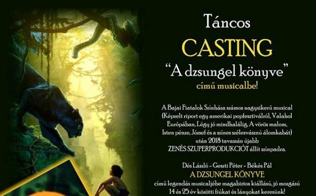 """Táncos CASTING """"A dzsungel könyve"""" című musicalbe!"""