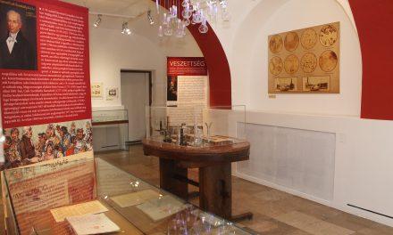 Szúrópróba – Tanúságok és tanulságok az oltások történetéből