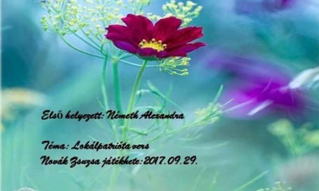 Németh Alexandra gyermekotthont támogat verseivel