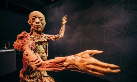 Budapestre érkezik a BODY kiállítás