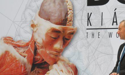 Megnyílt a BODY Kiállítás a KOMPLEX-ben