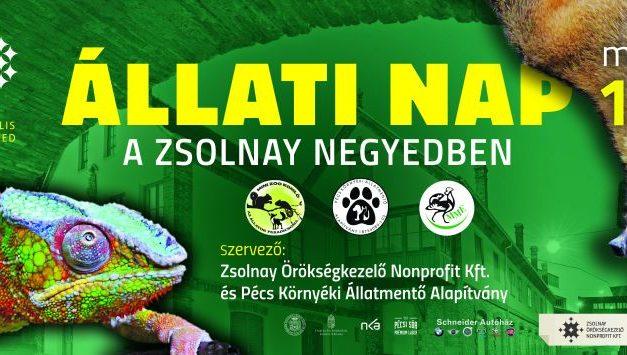 """""""Állati nap"""" a Zsolnay Negyedben"""