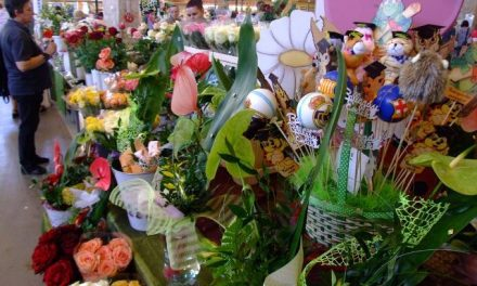 Színpompás virágkínálat a kecskeméti piacon ballagásra és anyák napjára