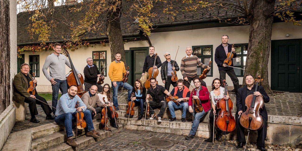 Zenei svédasztal ínyenceknek a Liszt Ferenc Kamarazenekar következő koncertje