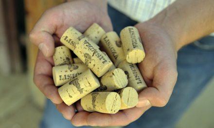 Megérkezett 2018 első primőr bora