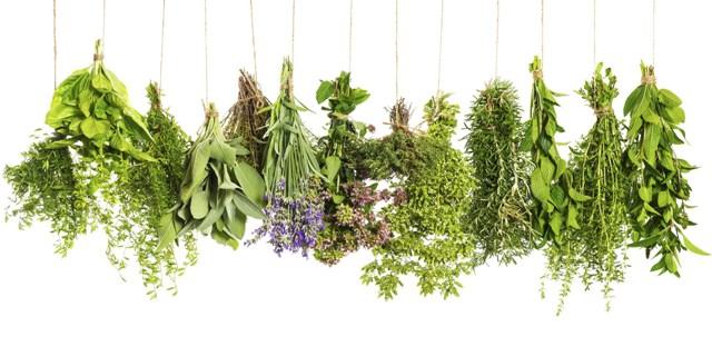 Fűszernövények szárítása – avagy tegyük el télire!