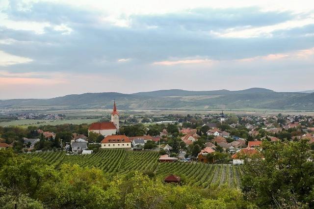 Kerekdomb Fesztivál Tokaj-hegyalján