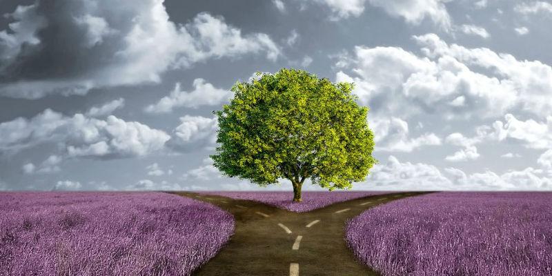 A döntés a tiéd! Kilépsz a komfortzónádból?