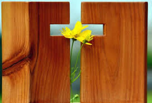 A törvények betartásáról és a krisztusi szabadságról