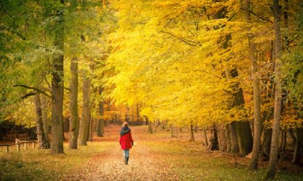 Őszi bakancslista hedonistáknak –10 dolog, amit ne hagyj ki ebben az évszakban