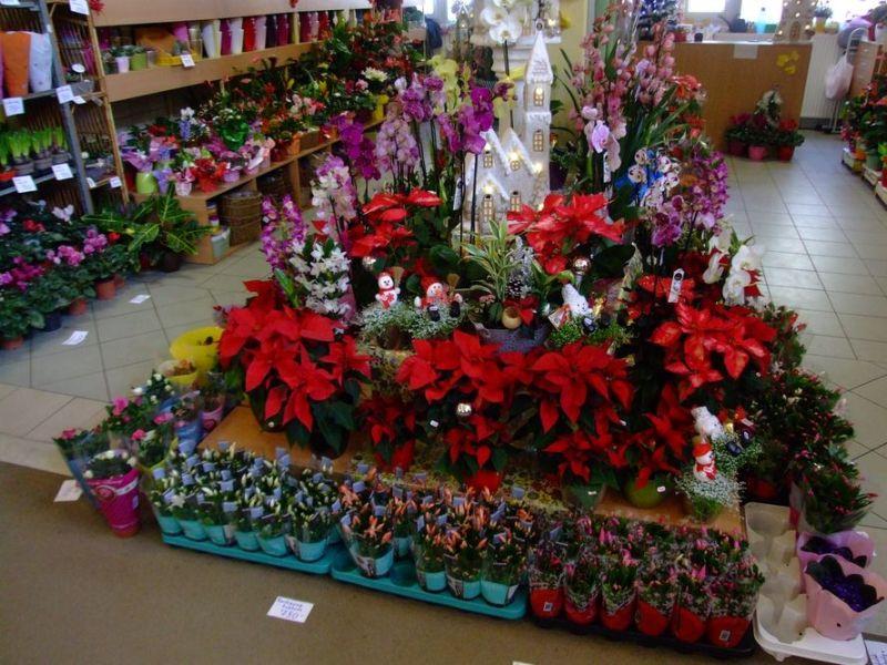 Megkezdődött a karácsonyi vásár a piacon