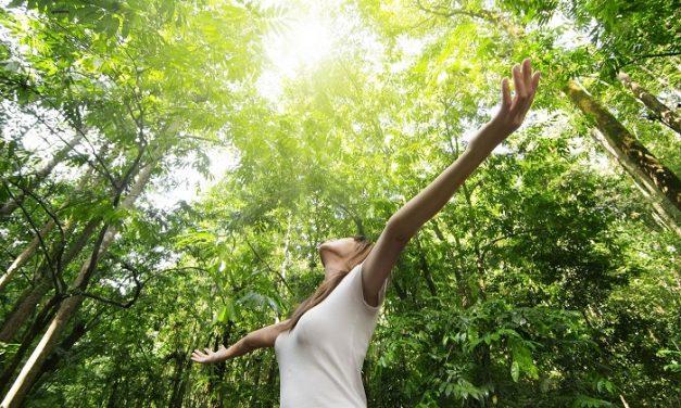 5 tipp a tavaszi fáradtság átvészelésére