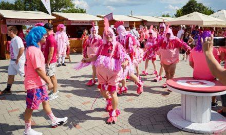 Készülj, júliusban ismét Rozé Fesztivál Villányban!