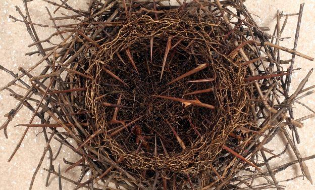 Kecskeméti kortárs keresztény művészeti gyűjtemény a Tihanyi Apátságban