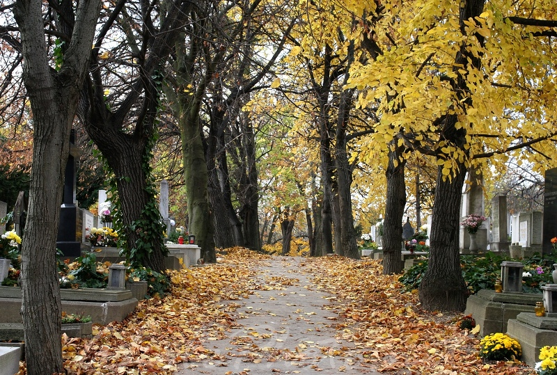 Bizony por és hamu vagyunk – Legendás helyek Budapesten: Farkasréti temető