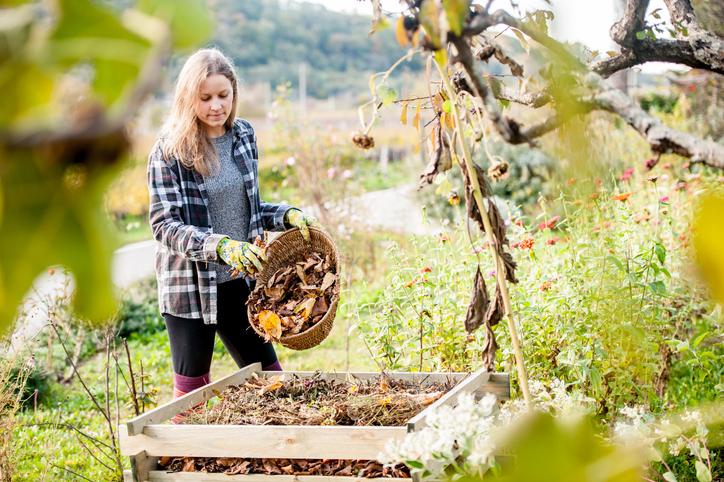Az őszi kertrendezés 7 legfontosabb lépése