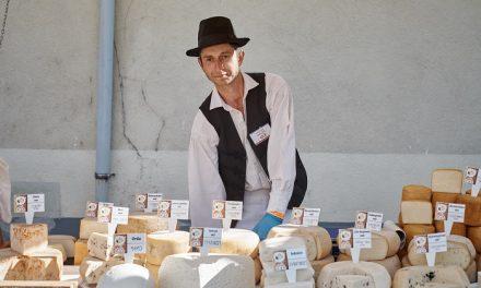 Sajtmustra – Kihirdették az ország legjobb sajtjait