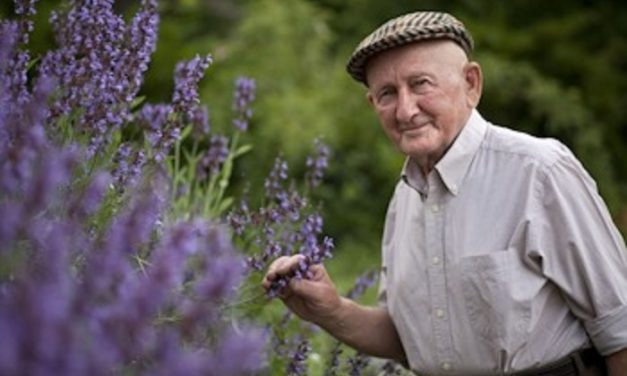 Vírus ellen nincs gyógynövény! Gyuri bácsi otthon marad, ezt kéri az idősektől is