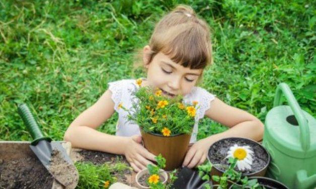 Kertészkedés gyermeki kezekkel