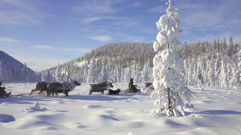 Január: Boldogasszony hava – Hónapsoroló