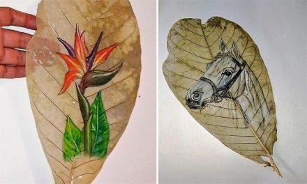 Interjú Yasmin Olivares venezuelai festőművésszel