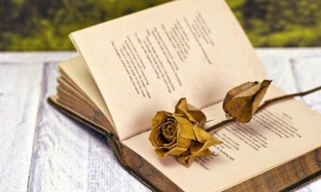 Április 11. – A magyar költészet napja