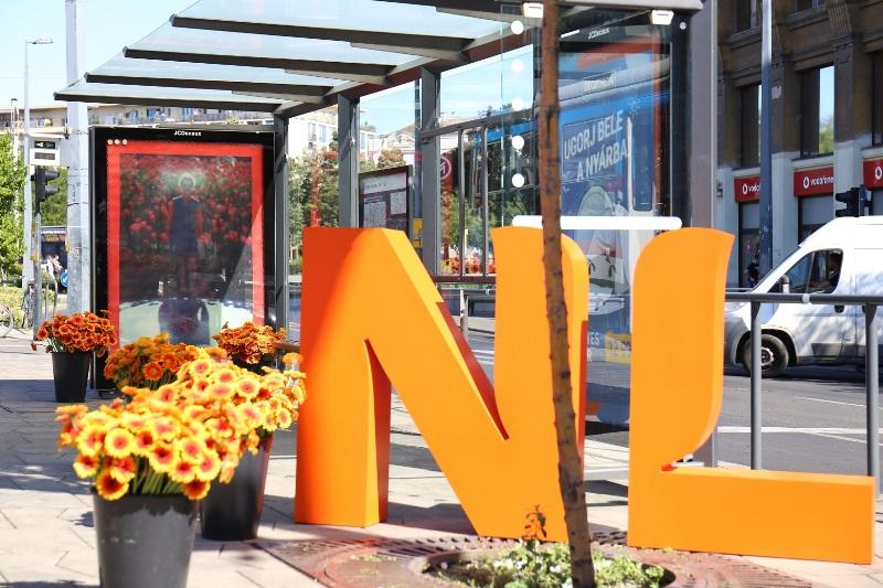 """Júliusban """"virágba borul"""" egyik belvárosi villamosvonal 25 megállója"""